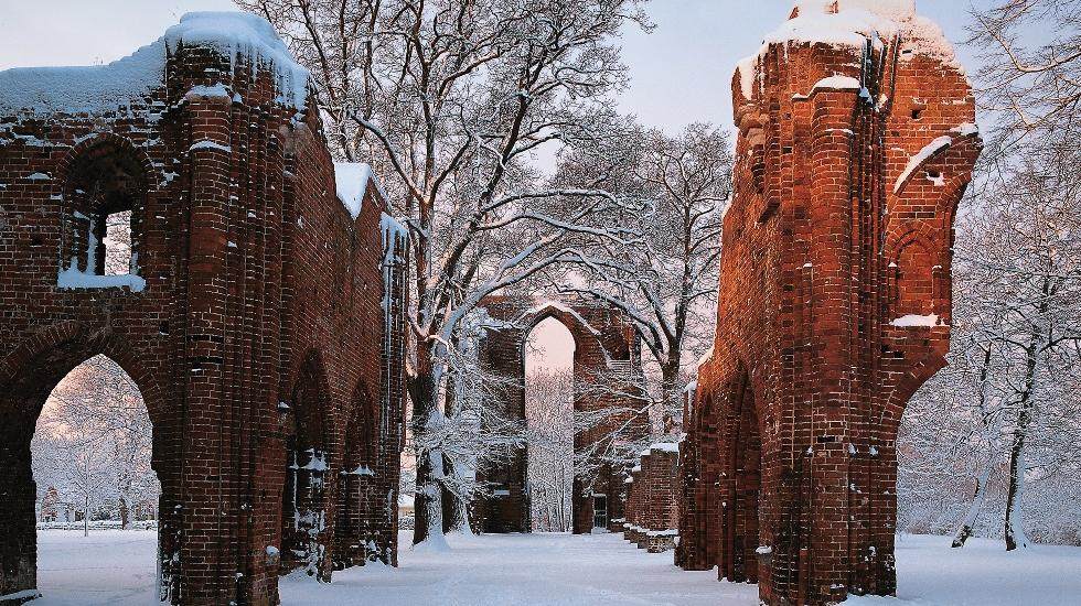 Eldena Monastery Ruin in Winter, © TMV/Grundner